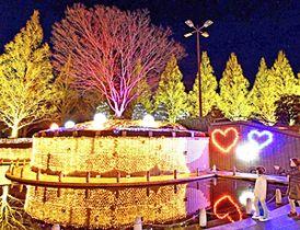 試験点灯で幻想的な景観をつくり出した「光のTREEページェント」=14日午後、福島市・あづま総合運動公園