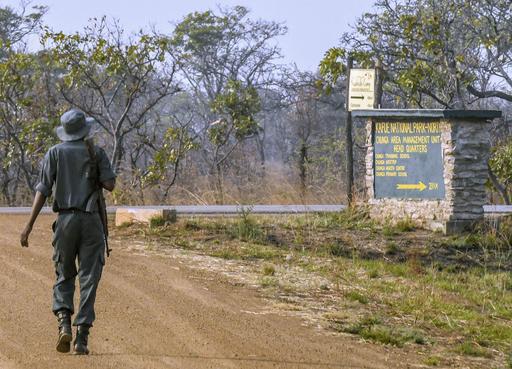 アフリカ南部ザンビアのカフエ国立公園で、銃を肩にパトロールするレンジャー=2018年8月(共同)