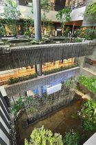 アミュプラザくまもと内に造られた立体庭園「ぼうけんの杜」。3階の高さから滝が流れ落ちている=20日、熊本市西区(高見伸)