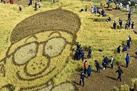 田んぼアート第2会場で、手塚治虫さんのキャラクターの周りのつがるロマンを刈る尾上総合高生ら