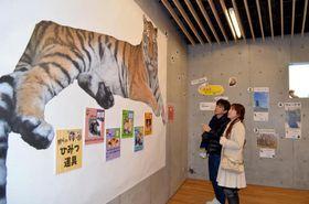 トラの特徴などを説明する展示に見入る来園者