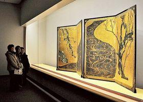 来館者の人気を集めている紅白梅図屏風=熱海市のMOA美術館