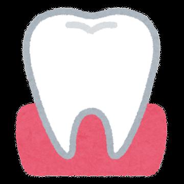 赤ちゃんの歯と虫歯予防 乳歯生えたら定期健診を