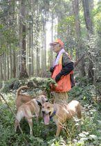 猟犬を連れてイノシシを探す甲佐町鳥獣駆除隊の松永博文さん=11日、甲佐町