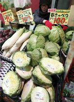 店頭に並ぶ暖冬の影響で値下がりしたキャベツやダイコンなどの野菜=22日午後、東京都練馬区