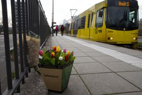 19日、オランダ中部ユトレヒトの発砲事件現場に置かれた花と、路面電車(AP=共同)