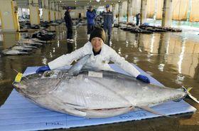386キロのクロマグロの水揚げを喜ぶ児玉保彦船長=25日朝、和歌山県那智勝浦町