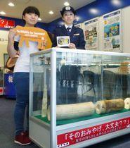 象牙製品の海外持ち出しは違法と注意喚起するWWFジャパン(左)と税関の担当者=23日午前、羽田空港