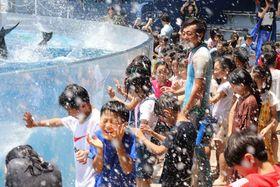 イルカから水しぶきを浴びせられ、大喜びする児童たち(京都市下京区・京都水族館)