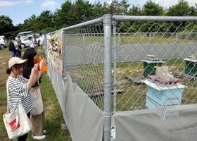 空港はちみつの養蜂場を取材する学生