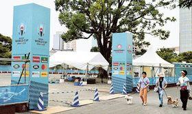 入場ゲートが設置され着々と進むファンゾーンの設営=17日午後、静岡市葵区の駿府城公園