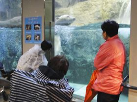 北海道の旭山動物園で以前に行われた夜間特別開園の様子(同園提供)