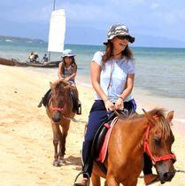 平久保校区の保護者らが企画したチャリティー祭りで与那国馬の乗馬体験などを楽しむ参加者=石垣市平久保
