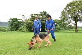 嘱託警察犬と指導士を目指すダリルと河野さん(右)