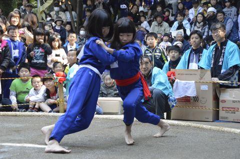 2年ぶりに開かれる「金刀比羅花相撲ちびっこ大会」=2016年11月、徳島市勢見町の金刀比羅神社