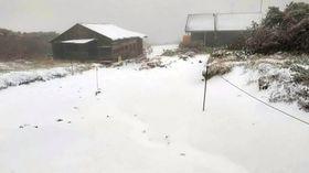 初雪が観測された大雪山系黒岳の避難小屋付近=19日早朝、北海道上川町(りんゆう観光提供)