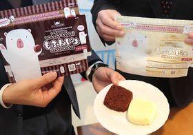 新開発した2種類のケーキミックスから作った食物アレルギー対応のケーキ