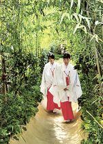 整備が完了した「楠への小路」=熱海市の来宮神社