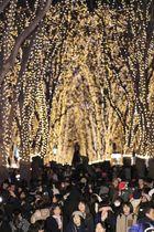 「SENDAI光のページェント」で、ケヤキ並木を彩るイルミネーションを楽しむ人たち=6日夜、仙台市