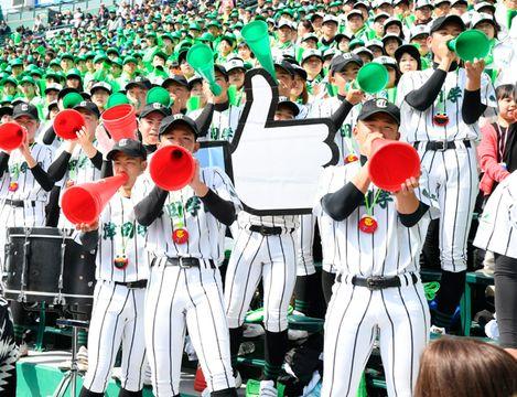【津田学園のチャンス到来で声援のボルテージが上がる一塁側アルプススタンド=阪神甲子園球場で】