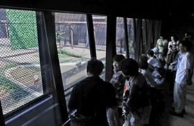 トキ分散飼育センターの観覧棟「トキみ~て」で観察する人たち=18日、長岡市寺泊夏戸