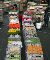 オランダ南西部ナールトワイクにある花市場。この市場でもワークシェアリングを積極的に取り入れている=2009年3月(共同)