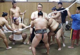 引退相撲で使う新しい綱を締める荒磯親方(中央)=24日、東京都江戸川区の田子ノ浦部屋