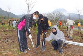 雲仙・普賢岳噴火災害で焼失した森の再生を願い、島原市南千本木町の砂防指定地にクヌギなどの苗木計約500本を植樹