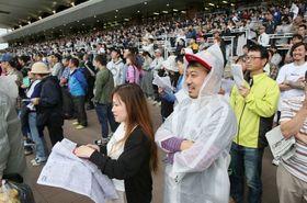 小雨が降る中、レースを見つめる観客=16日午後2時50分(石川崇子撮影)
